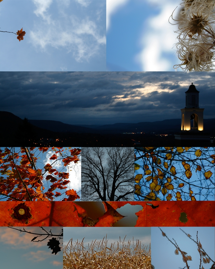 Photo Essay Fall on Blue